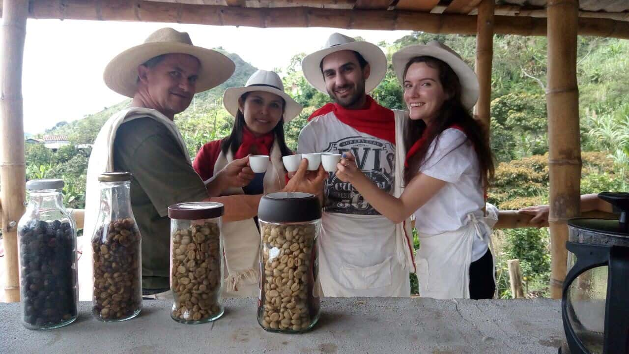 Stay Busy with our Upgraded Coffee Tour in Medellin